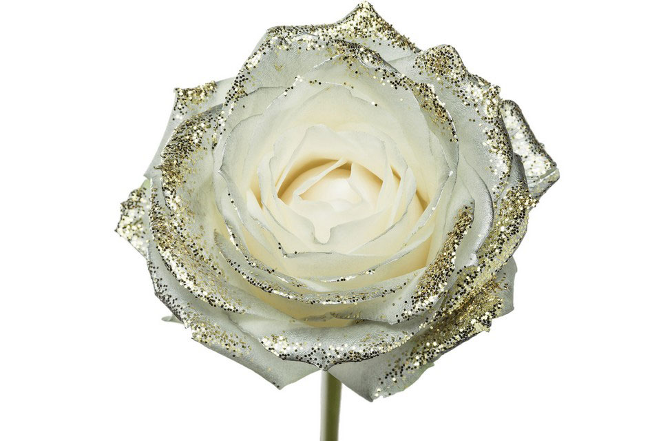 P° 1440 White Blush Silver Diamond Gold