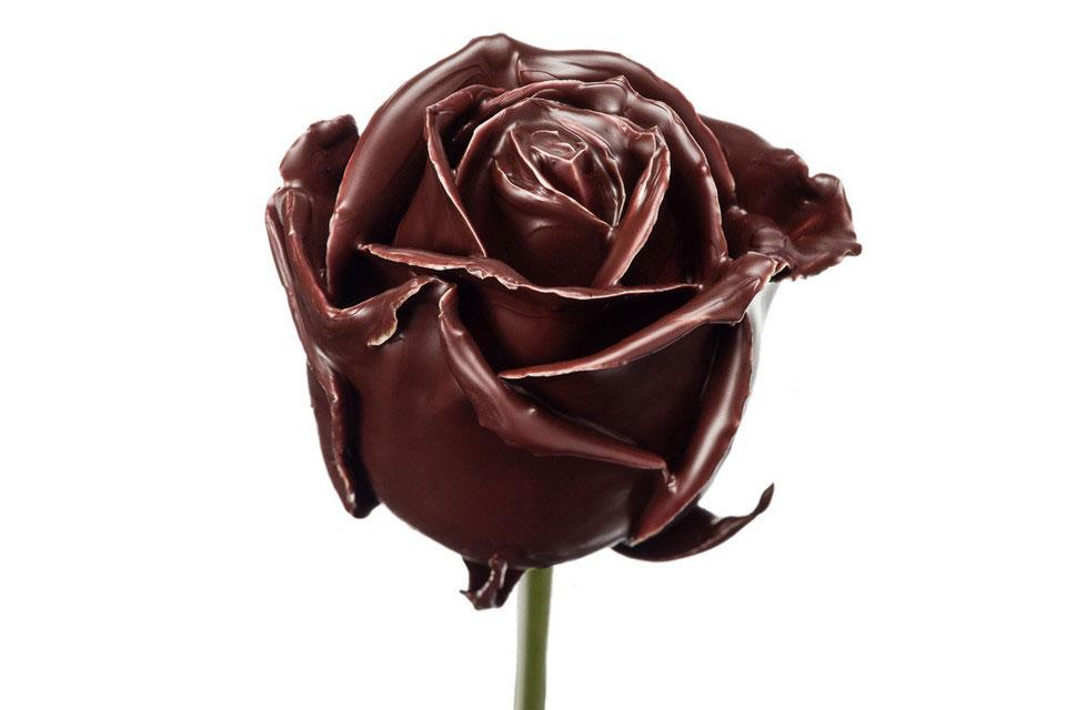 P° 284 Chocolade