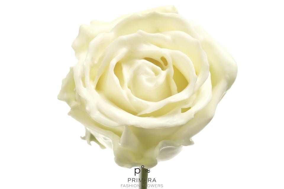 P° 318 Soft White