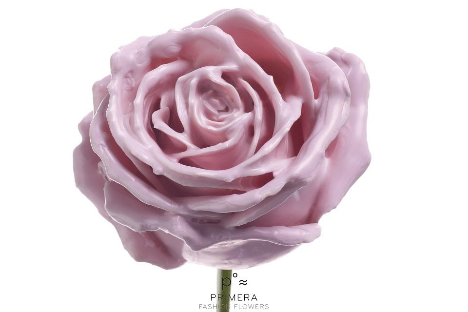 P° 374 Lilac Soft