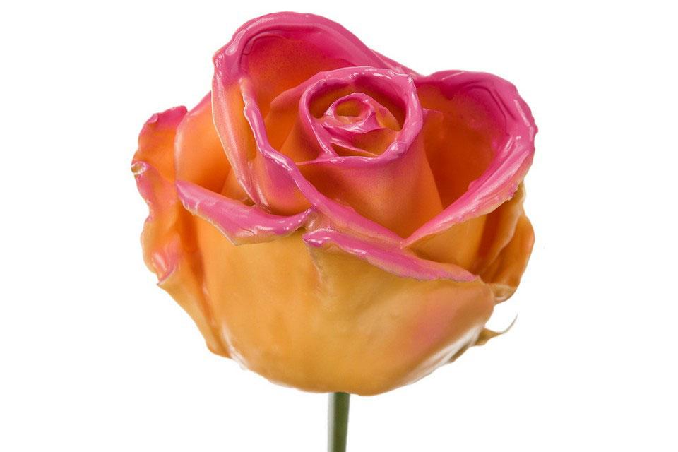 P° 394 Ochre Blush Pink