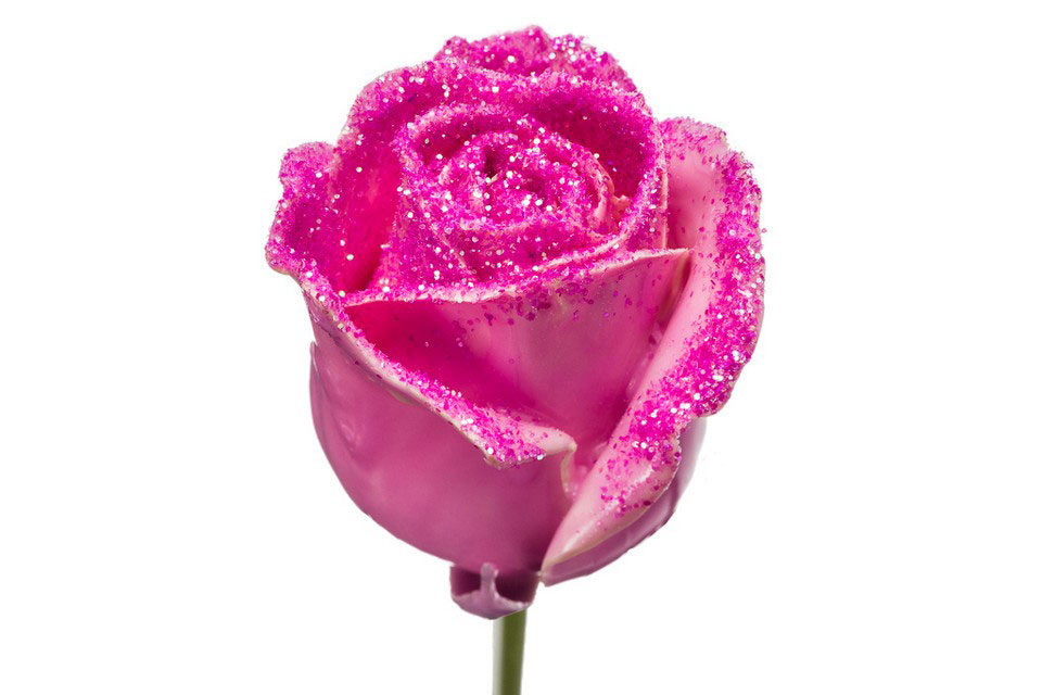 P° 482 Pink Diamond Pink