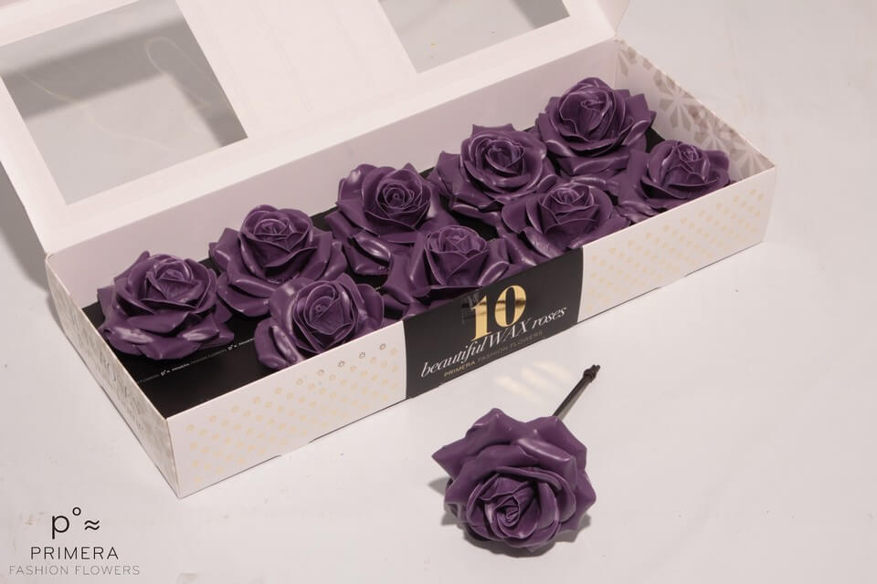 P°a 500 purple