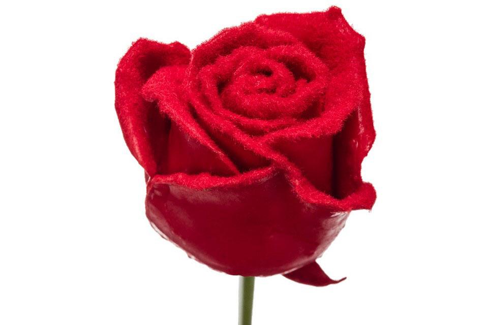 P° 598 Red Velvet Red