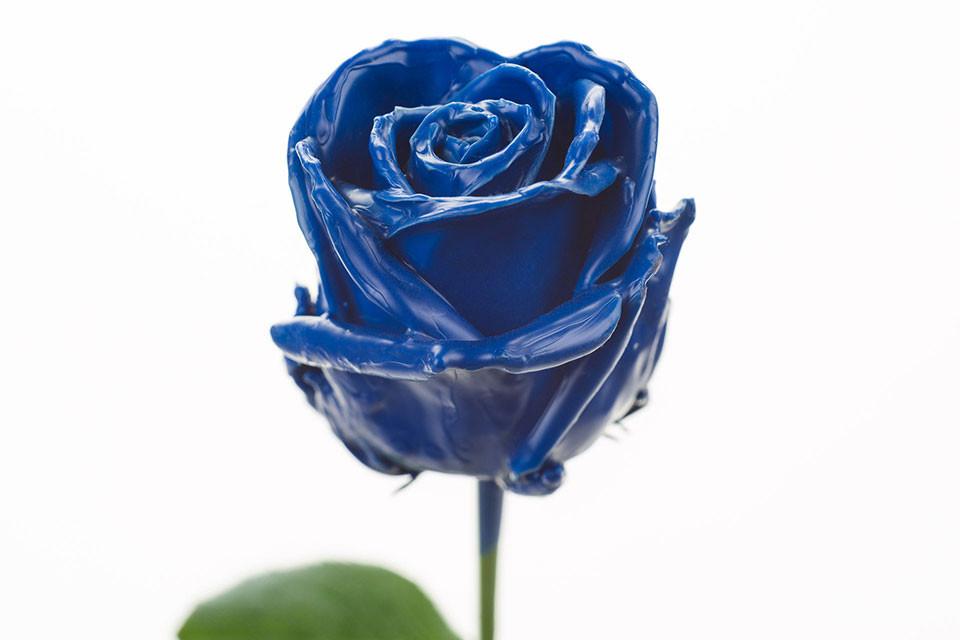 P° 150 Blue