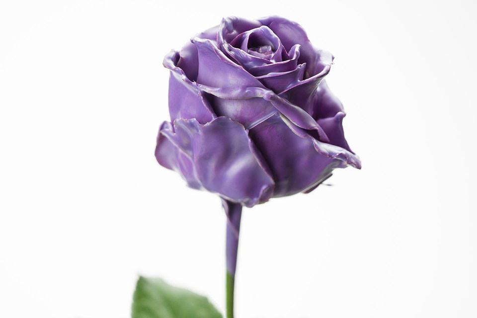 P° 620 Violet (Milka)