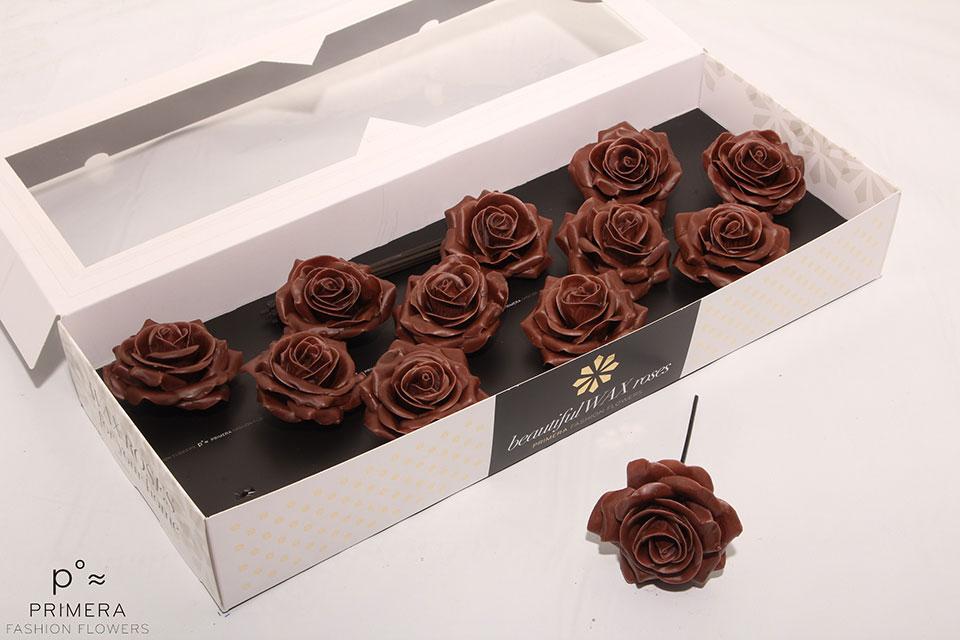 P°A-9284-M-Chocolade