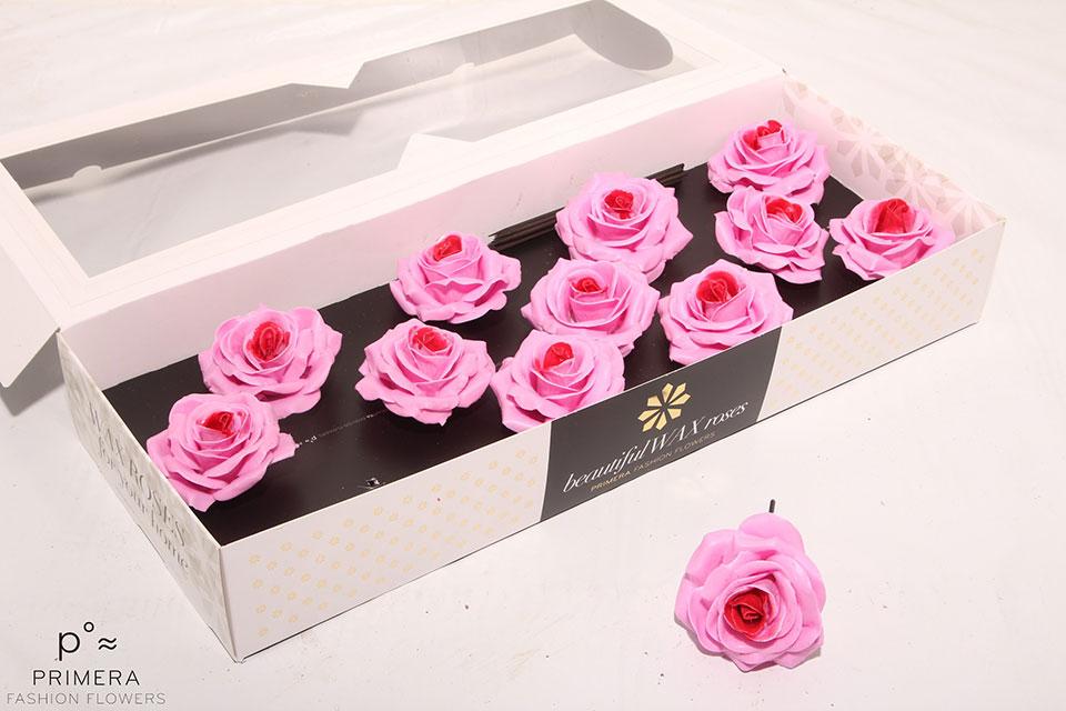 P°A-9494-M-Pink-Sweet-Blsh-Rd