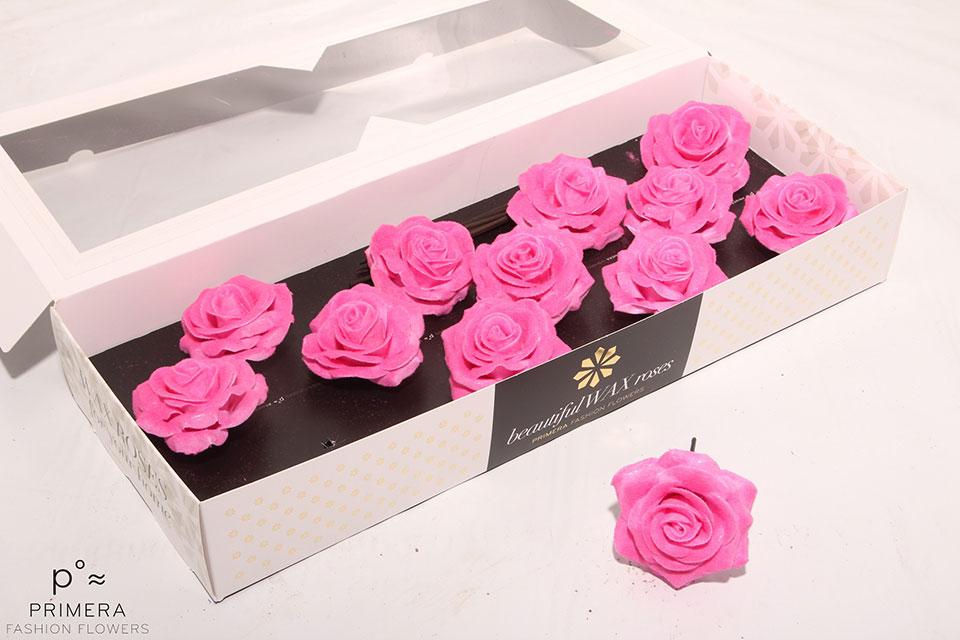 P°A-9497-M-Pink-Velvet-Pink