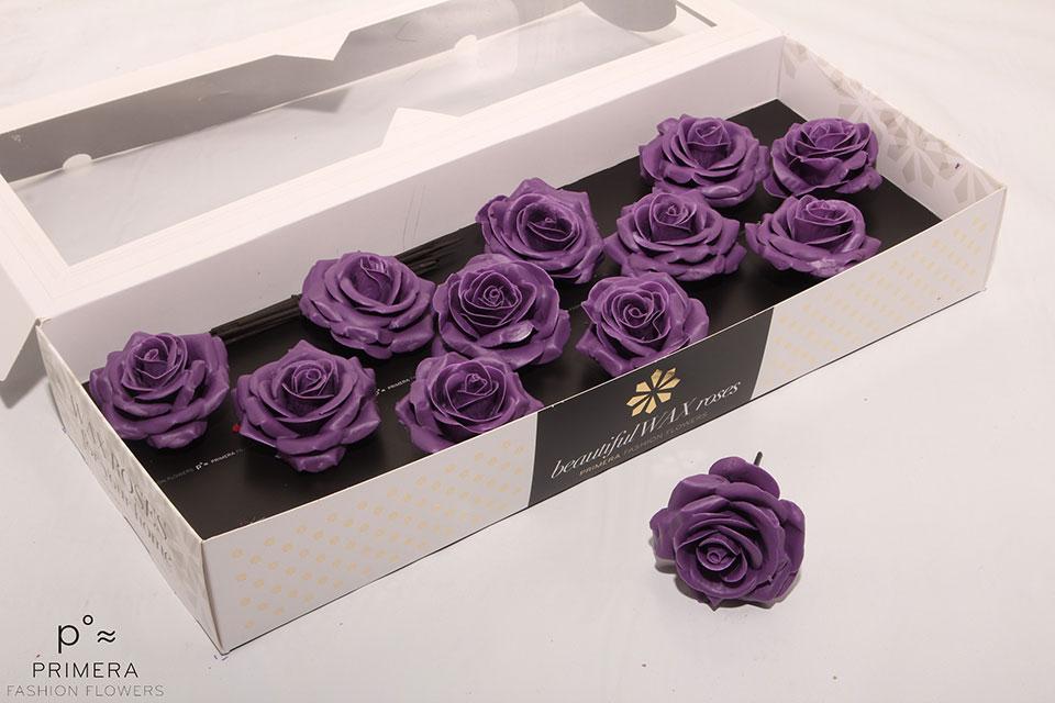 P°A-9500-M-Purple