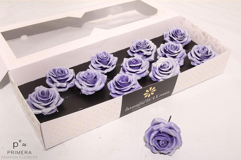 P°A-9630-M-Violet-Blush-White