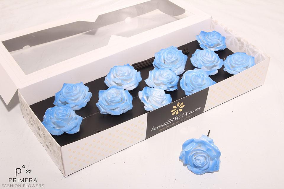 P°A-9660-M-Wh-Blush-Blue