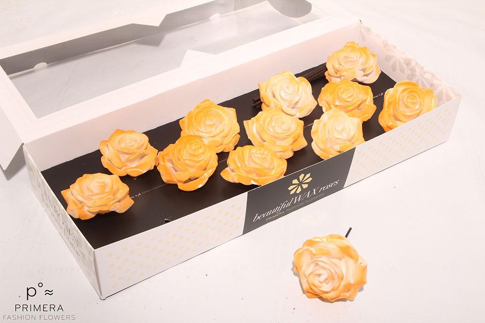 P°A-9720-M-Wh-Blush-Orange