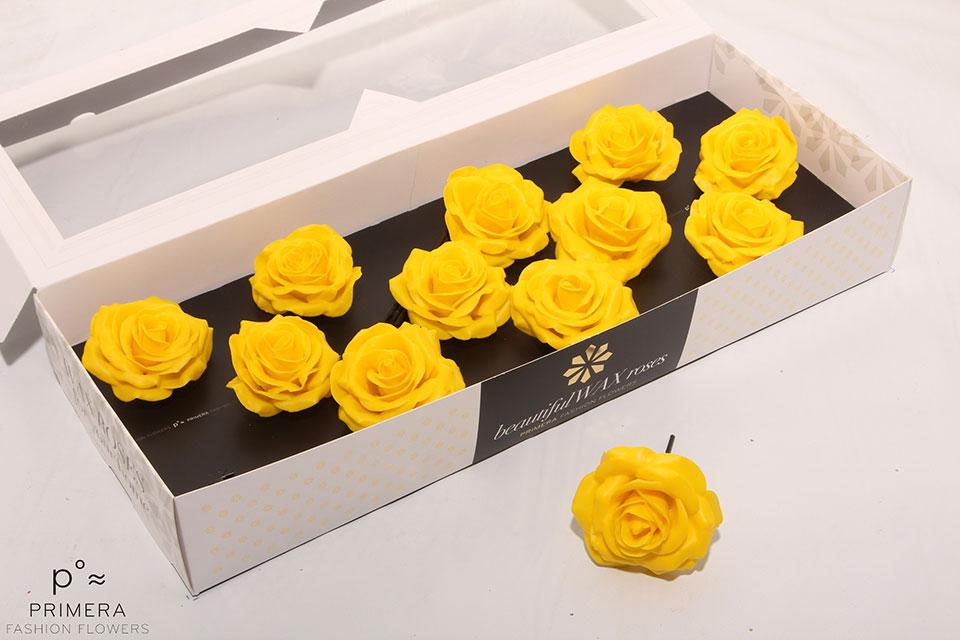 P°A-9820-M-Yellow